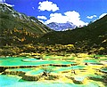 春天·黃龍風景圖片