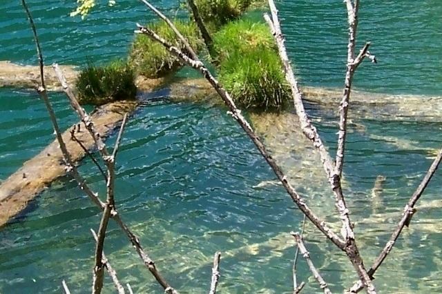 照片:九寨美景-海底3