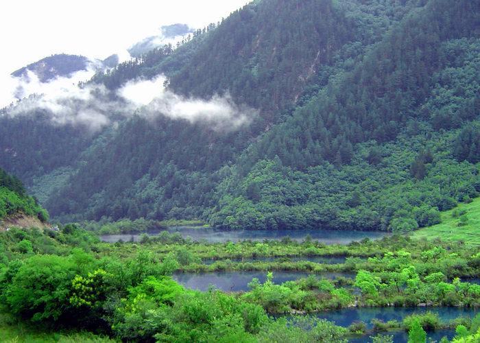 照片:九寨-树正群海