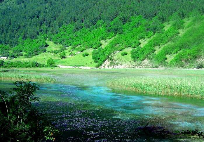 照片:九寨-五彩河流