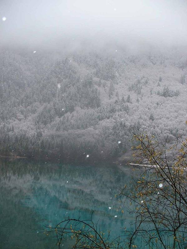 照片:九寨的雪