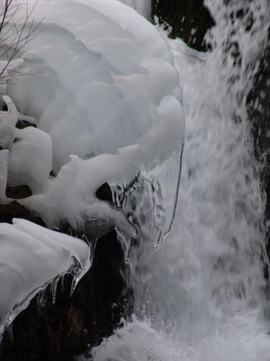 照片:冬季九寨-冰雪童话3