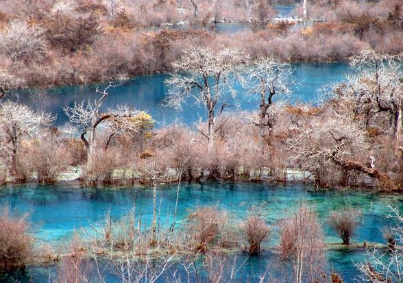 照片:冬季九寨-冰雪童话1