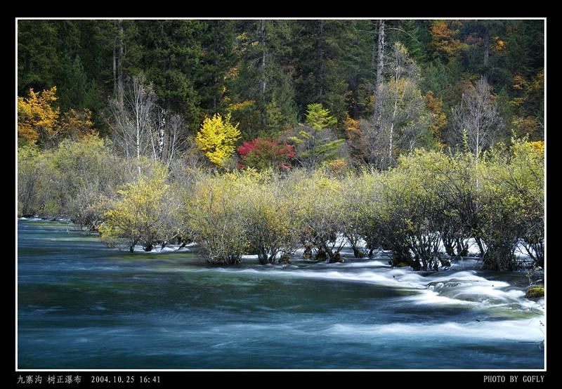 照片:九寨沟树正瀑布