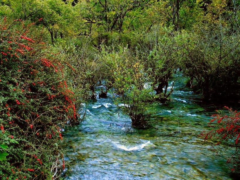 照片:九寨沟的水-老虎海3