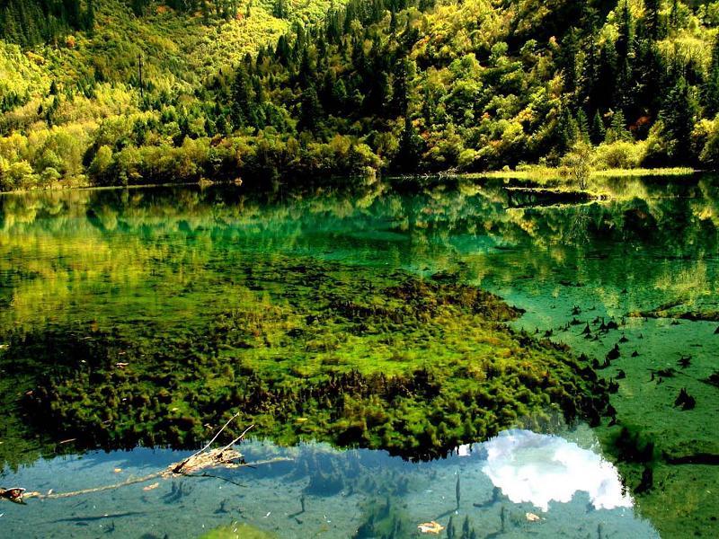 照片:九寨沟的水-五花海