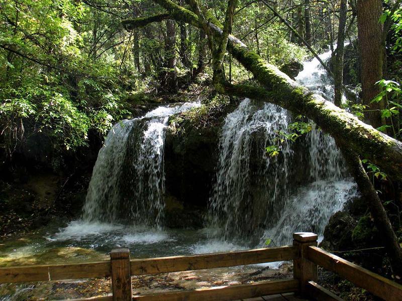 照片:九寨沟的水-熊猫海瀑布3