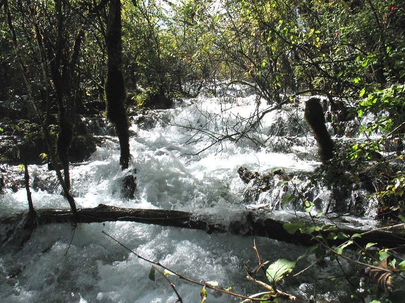 照片:九寨沟的水-熊猫海瀑布