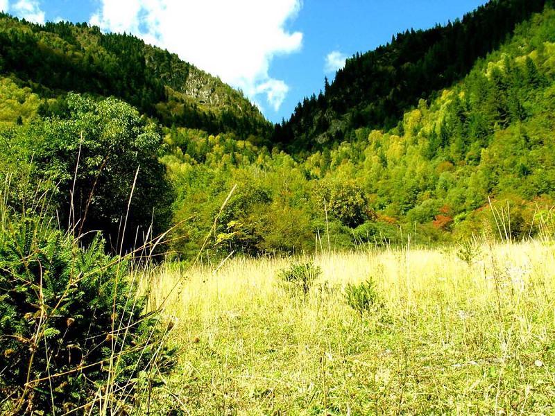 照片:九寨沟的山3