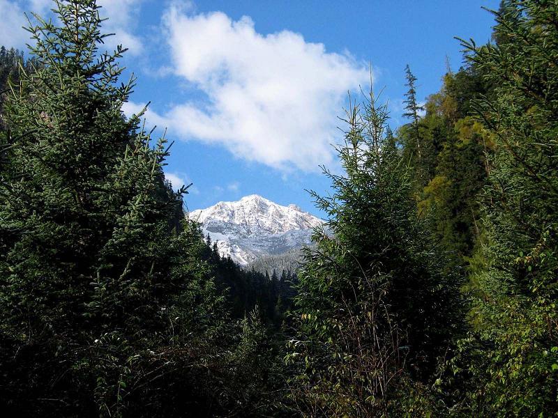 照片:九寨沟的山2