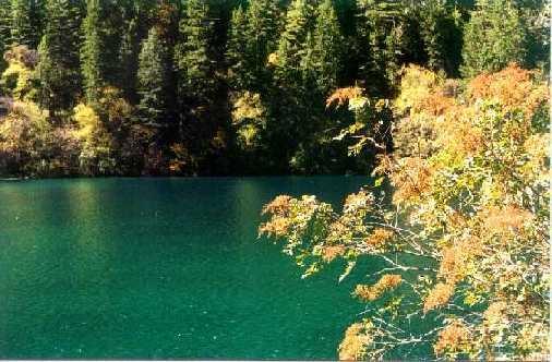 照片:五花海的秋天