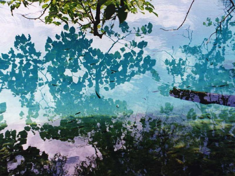 照片:九寨沟诡异的水
