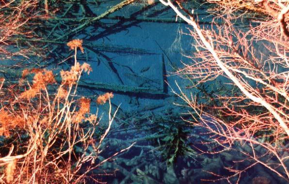 照片:五花海-跳跃的火花