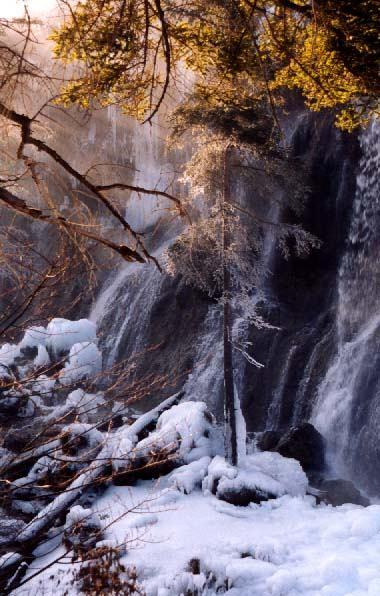 照片:九寨冬韵-诺日朗 3