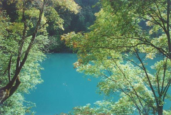 照片:秋水