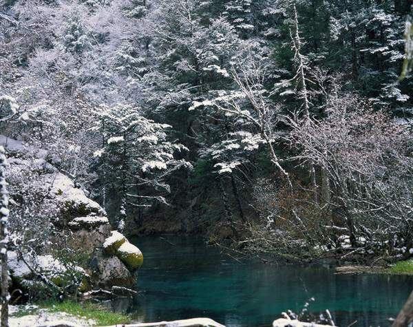 照片:九寨初冬