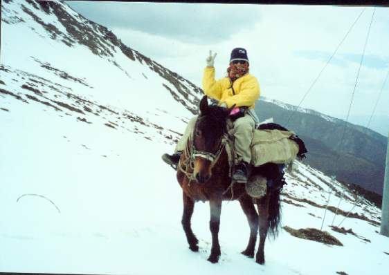 照片:骑马在雪地中