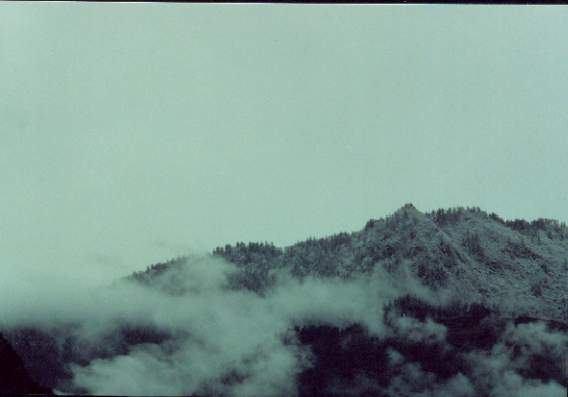 照片:骑马途中下雪了