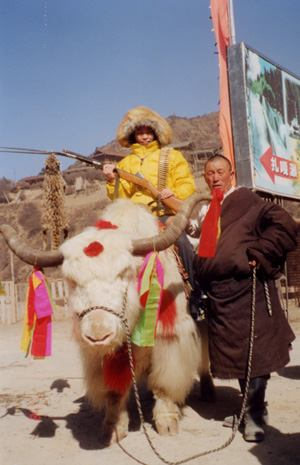 照片:牟尼沟里的藏民