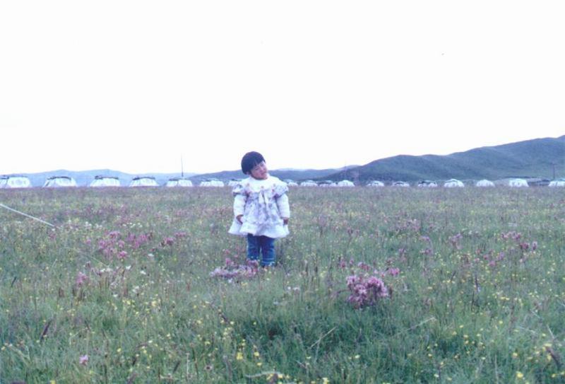 照片:让我在群花丛中唱首歌