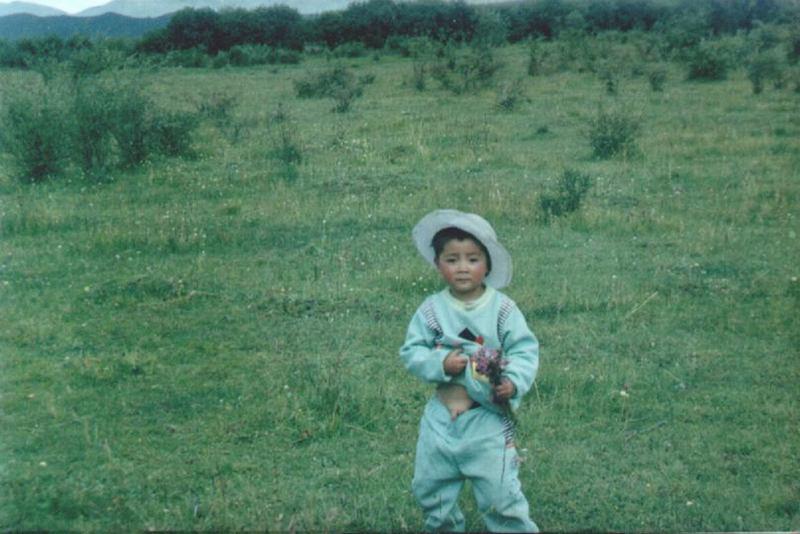 照片:让我在草地上撒点野
