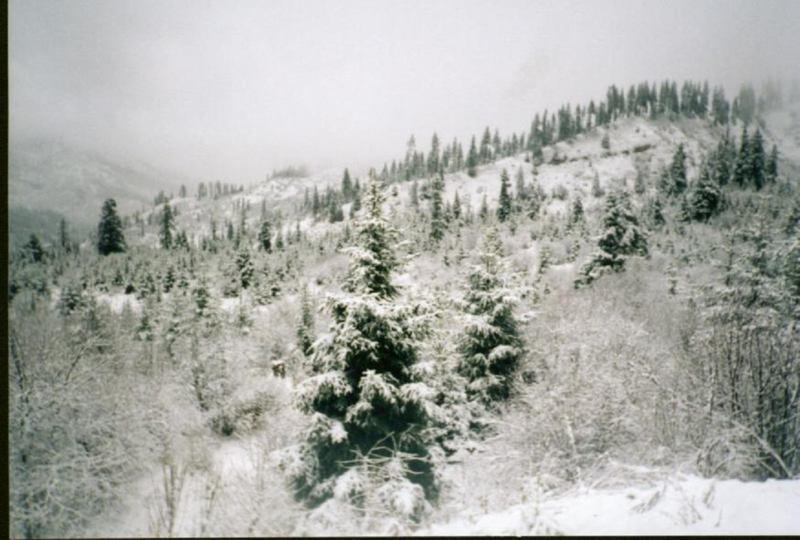 照片:九寨沟雪景