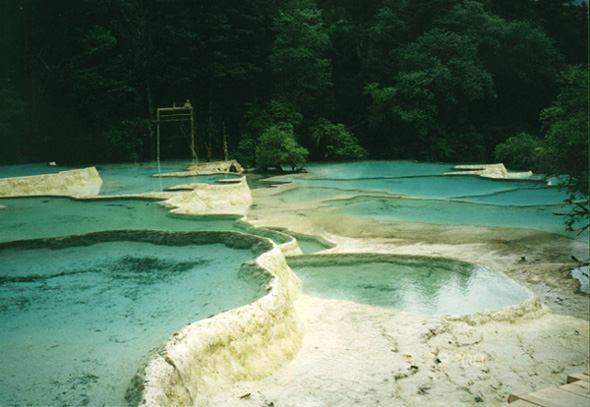 照片:黄龙 盆景池