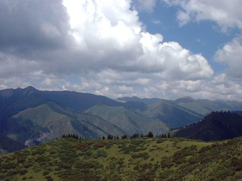 照片:在尕尕山远眺