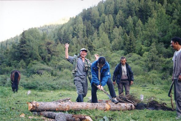 照片:快乐的伐木工