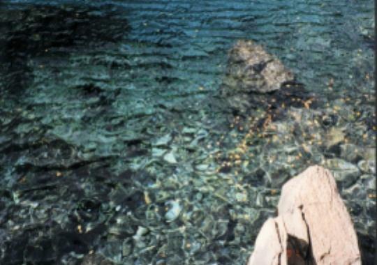 照片:九寨沟的水