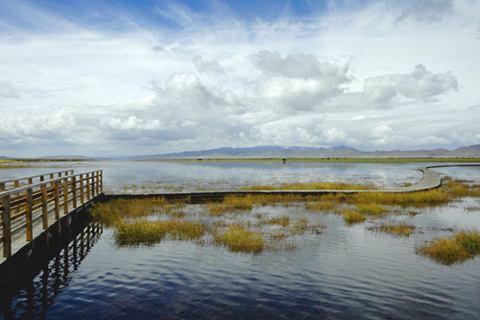 照片:四川若尔盖湿地-花湖