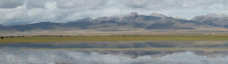 照片:若尔盖花湖
