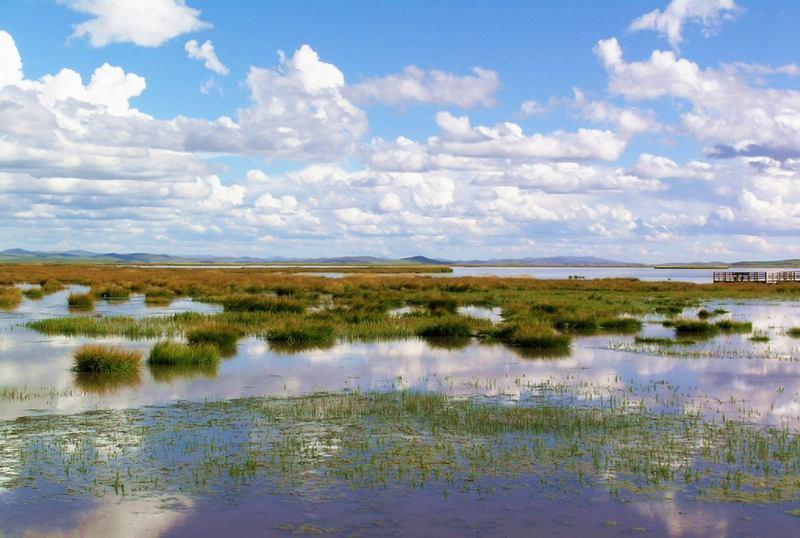 照片:九月的花湖(五)