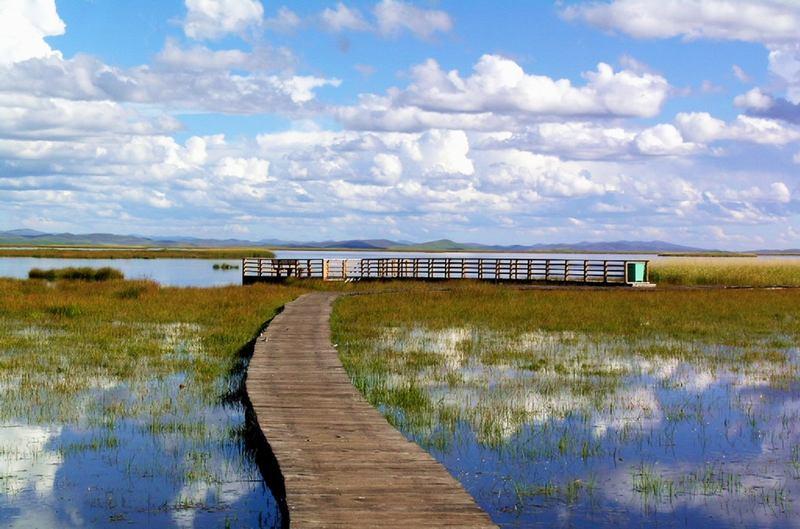 照片:九月的花湖(四)
