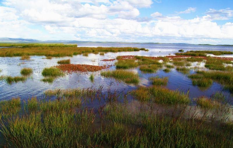 照片:九月的花湖(一)