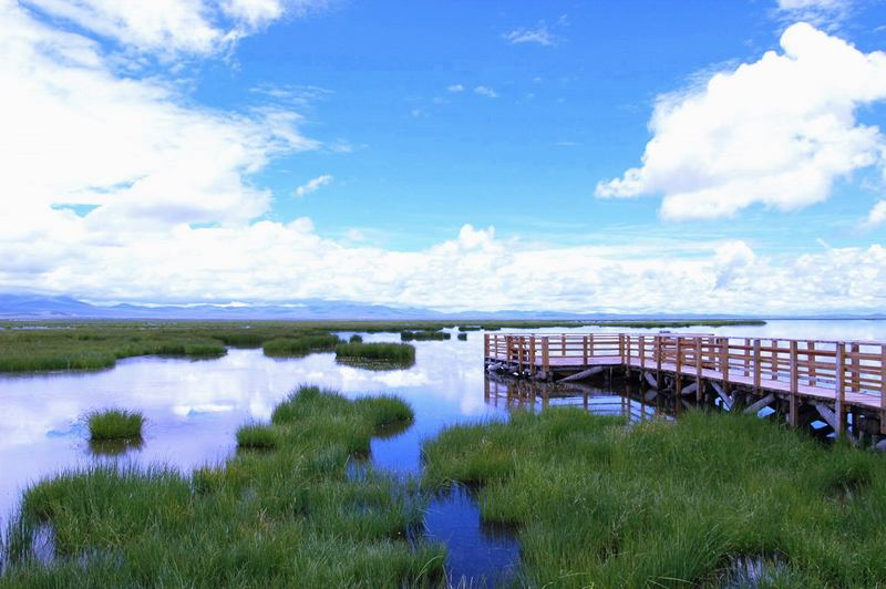 照片:梦中的花湖2