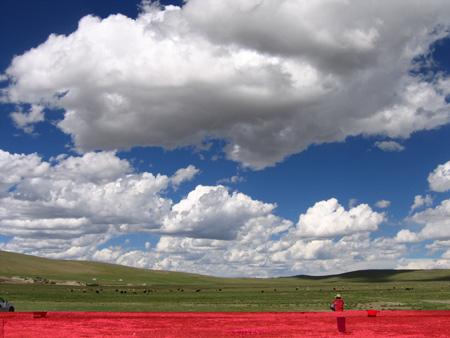 圖文:那曲草原