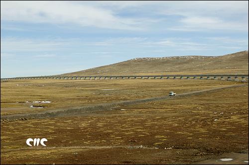 青藏鐵路穿越草原