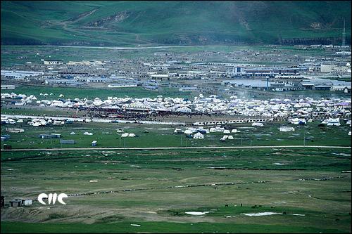 賽馬節時草原變成帳篷城