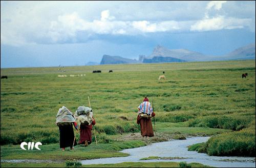 到納木錯朝拜的僧人_天湖——納木錯_樂途旅遊網