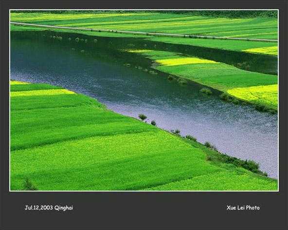 懷念青海 青海湖