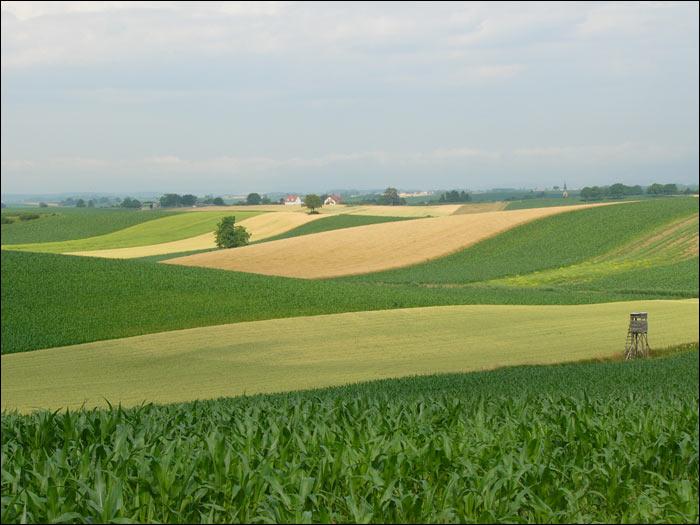 法國鄉村田園風光