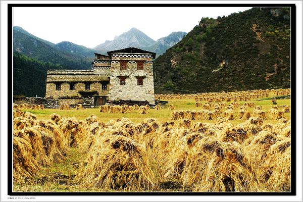 稻城亞丁旅遊風景圖片