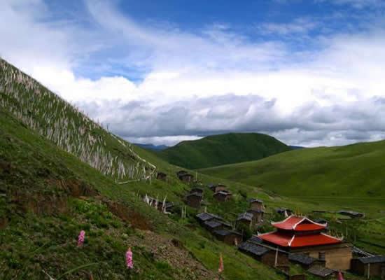 圖片:塔公草原
