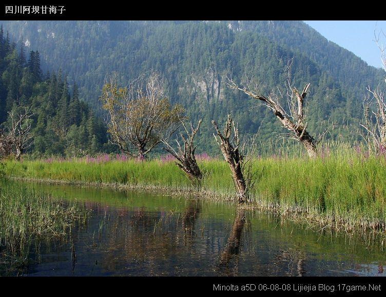 圖片:甘海子風光區