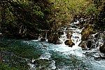 圖片:九寨溝黃龍之旅 樹正群海