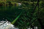 圖片:九寨溝黃龍之旅 臥龍海風景