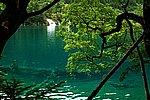 圖片:九寨溝黃龍之旅 雙龍海風景