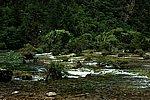 圖片:九寨溝黃龍之旅 盆景灘風景