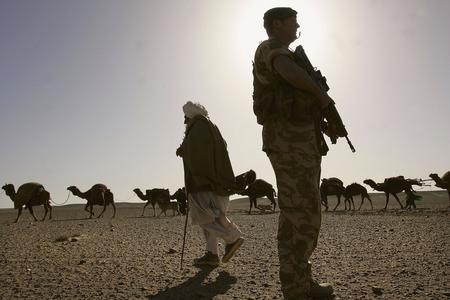 圖文:阿富汗遊牧人放牧駱駝群